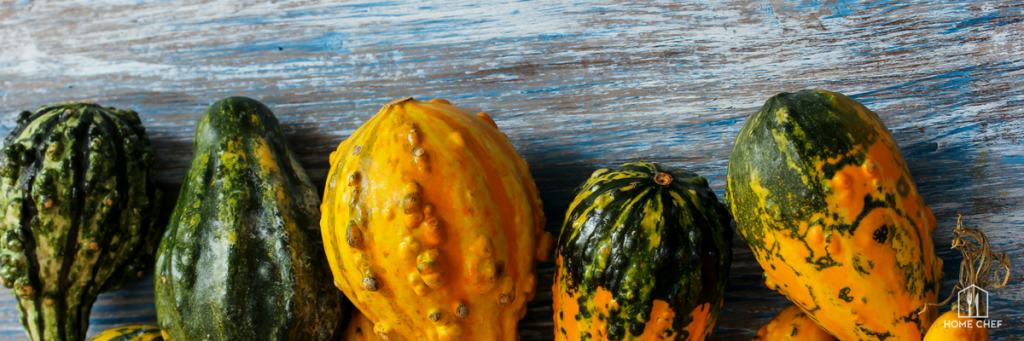Your Guide to Gourds